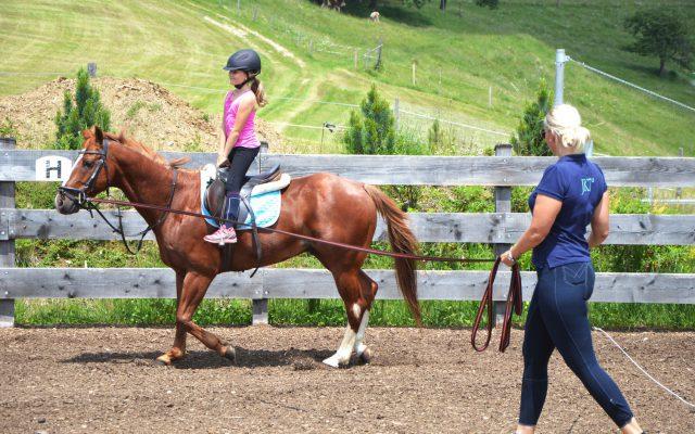 SOHO-Equestrian-DSC_1348