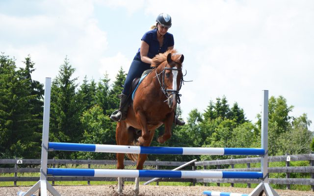 SOHO-Equestrian-DSC_1471