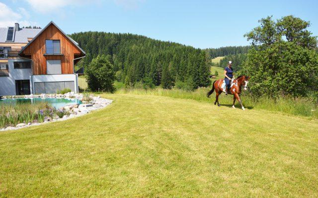 SOHO-Equestrian-DSC_1990